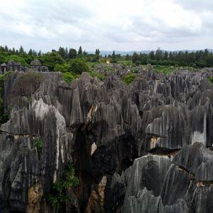 石林风景区旅游景点攻略图