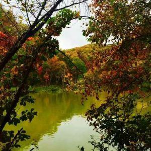 沙河子满族村寨旅游景点攻略图