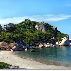 三角洲岛旅游景点攻略图