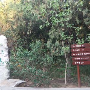 万佛洞旅游景点攻略图