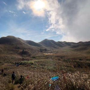 大南山旅游景点攻略图