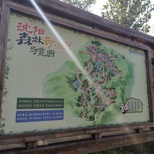 沈阳森林动物园旅游景点攻略图