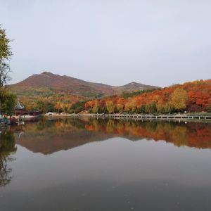 北宫国家森林公园旅游景点攻略图