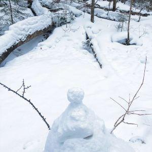 庙香山风景区旅游景点攻略图