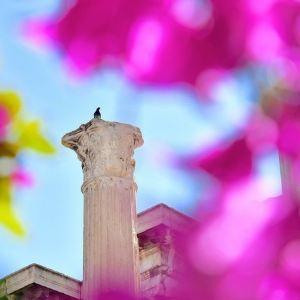 哈德良图书馆旅游景点攻略图