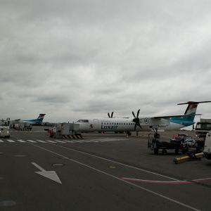 史基浦机场旅游景点攻略图