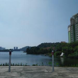 鸳鸯湖公园旅游景点攻略图