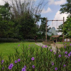 太仓现代农业园旅游景点攻略图