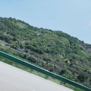 大堡子山秦公墓地旅游景点攻略图