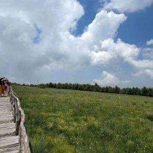 禾木草原旅游景点攻略图