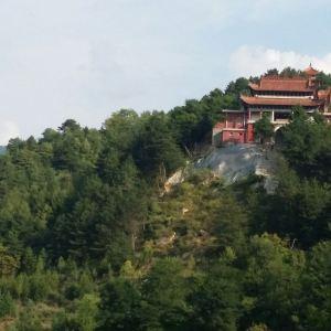 交龙寺旅游景点攻略图