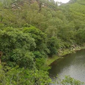 九龙湾旅游景点攻略图
