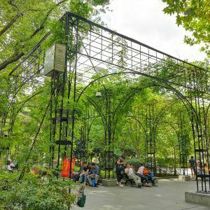 复兴公园旅游景点攻略图