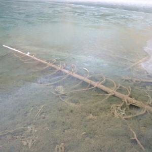 箭竹海旅游景点攻略图