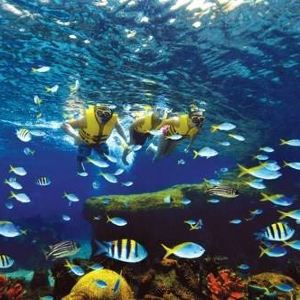 水上探险乐园旅游景点攻略图
