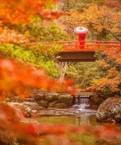 醍醐寺旅游景点攻略图