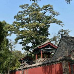 晋祠庙旅游景点攻略图