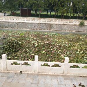 紫海香堤香草艺术庄园旅游景点攻略图