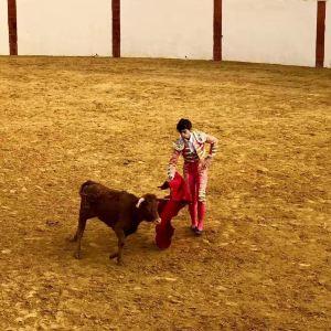 塞维利亚斗牛场旅游景点攻略图