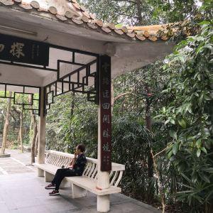 泰成公园旅游景点攻略图