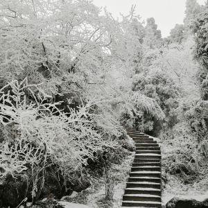南岳索道旅游景点攻略图