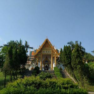 泰佛殿旅游景点攻略图