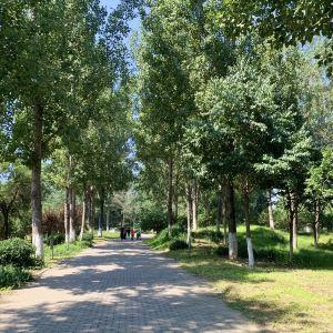 东小口森林公园旅游景点攻略图