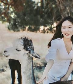 [阿德莱德游记图片] 在澳大利亚吹着夏天的海风,抱考拉喂袋鼠,尽情拥抱大自然~
