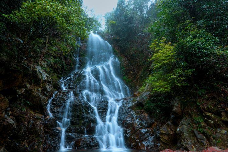 Yangling National Forest Park3