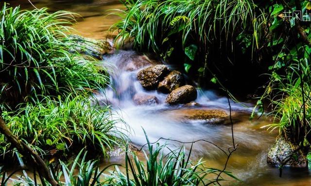 【这辈子都不想爬山了】系列2!2020年8月井冈山自然景观漫游7日---肉测良心建议