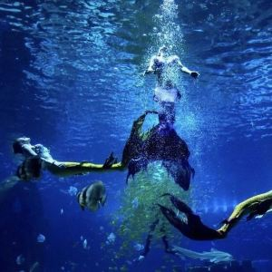 昆明融创海世界旅游景点攻略图