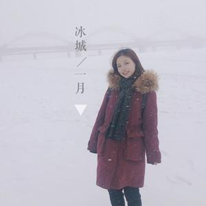 哈尔滨游记图文-凛冬已至 我在一月邂逅北国冰城