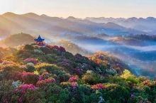阳春三月的多彩贵州,收藏一波,色动人心的打卡圣地