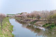 浙江海宁旅游,必打卡的三个景点,你去过吗?