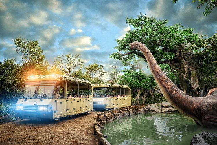 Chinese Dinosaur Park3