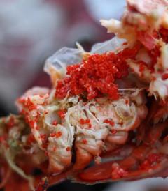[新斯科舍省游记图片] 龙虾随便吃!枫叶美哭!这里你必须知道!