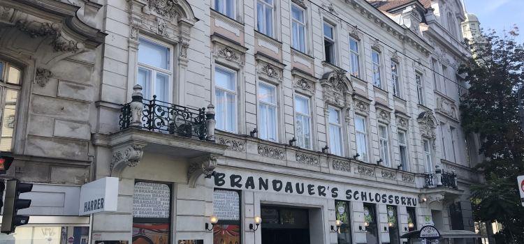 Brandauers Schlossbrau3
