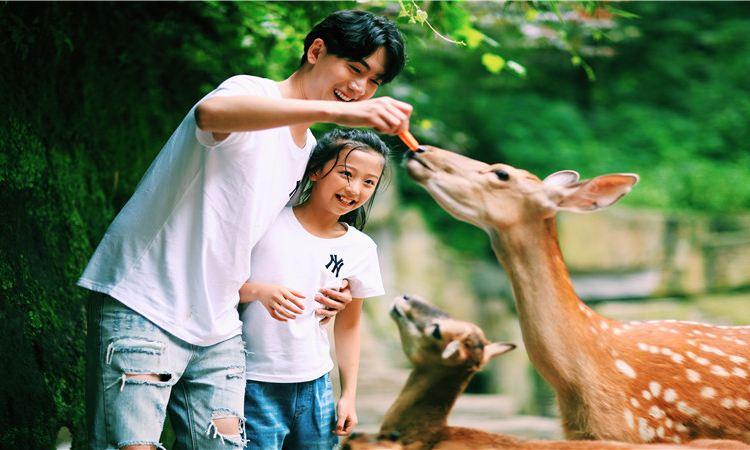 백봉협 야생 동물원1