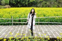 小长假踏春攻略:漫游缙云仙都的山清水秀花满地