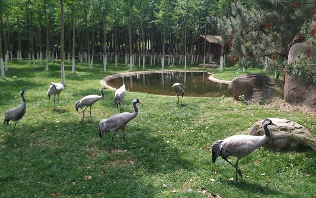 南昌艾溪湖湿地公园
