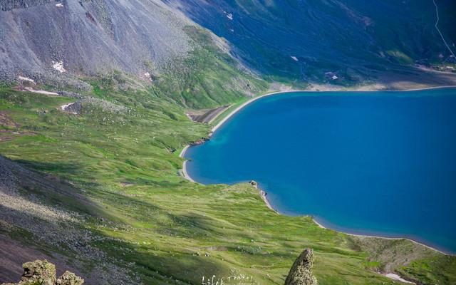 七月的山川、无恙丨在长白山,遇见一场高山花海