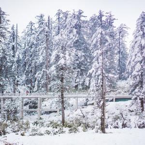 眉山游记图文-瓦屋山亲子游,距离成都最近的冰雪王国