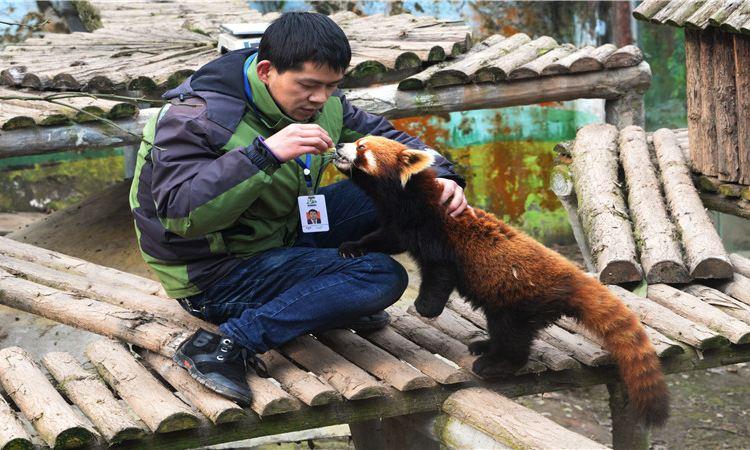 碧峰峽野生動物園4