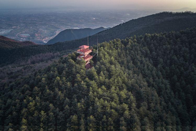 Tiantaishan Forest Park