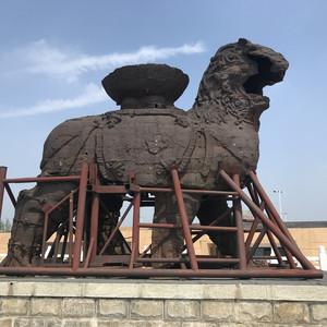 唐山游记图文-不平凡的庚子年简约乐亭海边和狮城游