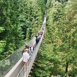 卡皮拉诺吊桥公园旅游景点攻略图