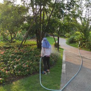 锦绣安仁奇境花园旅游景点攻略图