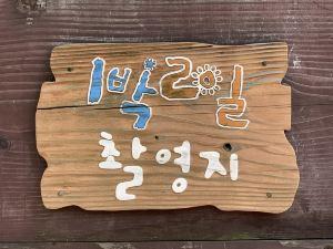 대구,추천 트립 모먼트