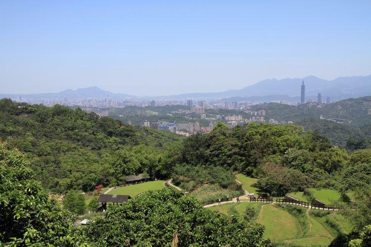 타이베이시립동물원3