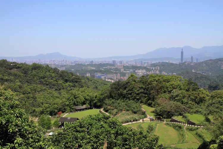 Taipei Zoo3